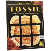 Simba Dickie Group 8016 - Fossil